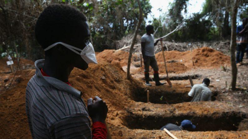 Diretor da OMS admite falta de financiamento para combater epidemia de ebola na África