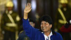 Evo Morales é anunciado vencedor e cumprirá terceiro mandato na Bolívia