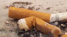 Cigarro provoca danos genéticos em questão de minutos