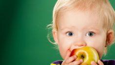 Dicas para criar seus filhos sem açúcar