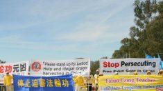 Parlamento australiano aborda tema Falun Gong durante negociações com China