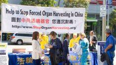 Nova política tenta esconder crimes hediondos e frequentes na China