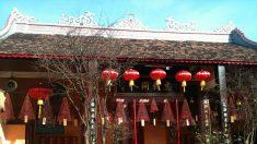 Qi, yin-yang e os meridianos na medicina tradicional chinesa
