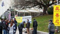 Cidadãos búlgaros condenam roubo e comércio de órgãos na China