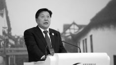 Chefe da propaganda da China agora controla seu navegador de internet