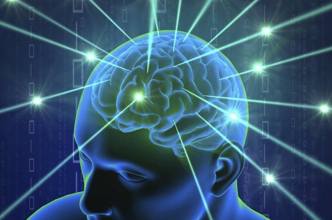 Cientistas descobrem 'GPS' no cérebro humano