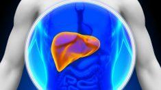 Desintoxique e torne seu fígado saudável