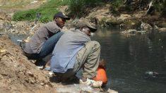 Invento genial saneia o meio ambiente e produz água