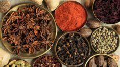 Sabor e saúde: a arte de usar especiarias com fim medicinal