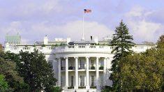 Casa Branca responde petição sobre extração forçada de órgãos na China