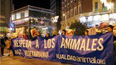 Por que Direitos dos Animais?