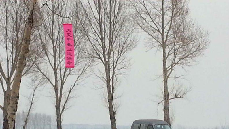 """""""Falun Dafa é bom"""" aparece em toda China no período do Festival das Lanternas"""