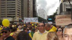 Manifestações de 15 de março: veja fotos da Av. Paulista, em SP