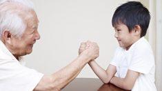 He shou wu: a erva chinesa da fertilidade e da longevidade