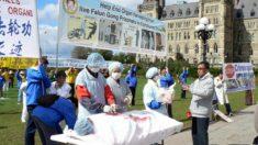 Documentário sobre extração de órgãos na China é exibido em TV australiana