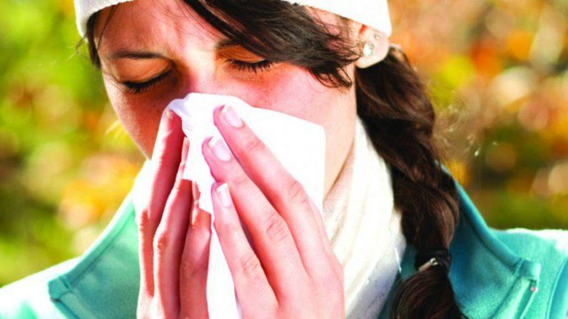 A abordagem da rinite alérgica através da Medicina Chinesa
