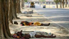 Onda de calor na Índia mata 800 pessoas