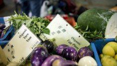 5 razões para não confiar nos produtos 'orgânicos' da China