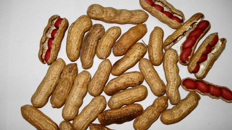 Amendoim: benéfico ao coração e ao bolso