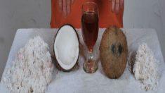 O fantástico óleo de coco que esculpe a cintura das mulheres