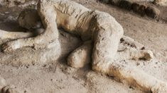 Povo de Pompeia possuía dentição perfeita há 2 mil anos, segundo arqueólogos