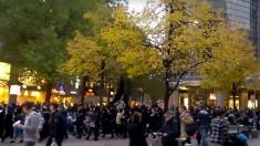 Passeata com centenas de muçulmanos deixa população alemã perplexa