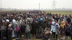 Refugiados sírios são apenas 21% dos imigrantes na Europa, aponta pesquisa
