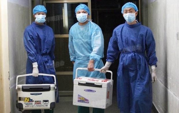 Turismo de transplante na China: assassinatos por demanda
