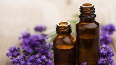Pais afirmam que óleos essenciais ajudam suas crianças autistas
