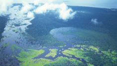 Amazônia Azul: um tesouro nas águas do Atlântico