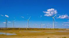 China ainda é ineficiente na utilização de energia renovável