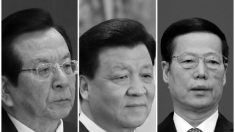 Dossiê Panama Papers envolve elite do Partido Comunista Chinês