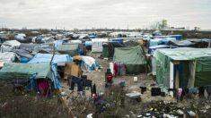 França e Reino Unido iniciam obras de muro para barrar refugiados
