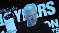WikiLeaks diz que e-mails de Hillary são de fonte democrata, não de russos