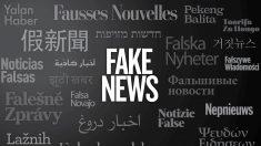 Identificar fake news não é problema para 58,8% dos eleitores brasileiros