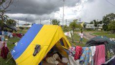Reformas estruturais ajudariam Brasil a lidar melhor com imigração venezuelana