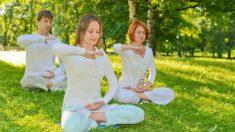 O que é Falun Dafa e por que se espalhou pelo mundo