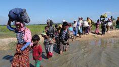 Bangladesh e Birmânia discutem repatriação dos refugiados rohingya