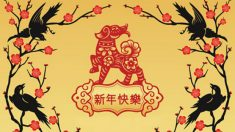 Horóscopo chinês 2018: ano do cão marrom da terra