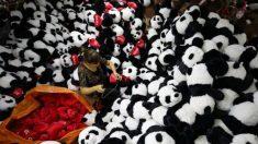 Internautas chineses concordam com baixa qualidade do 'Made in China', indica pesquisa