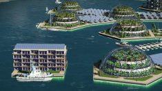 Primeira cidade flutuante do mundo será erguida no Oceano Pacífico em 2020