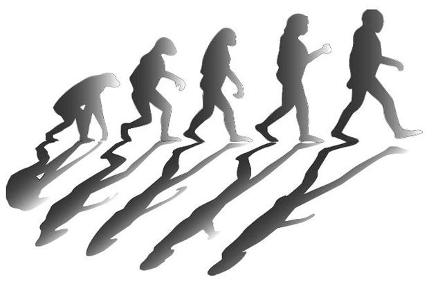 Crânio de 260 mil anos encontrado na China pode reescrever história da evolução