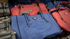 Pai e filhos são presos em Nova York com US$ 25 milhões em produtos falsificados da China