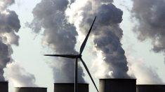 Os motivos ulteriores do movimento verde ambientalista