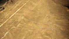 Geoglifo da orca é redescoberto no Peru