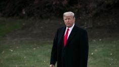 Trump alerta sobre a 'enfermidade' nas instituições dos EUA