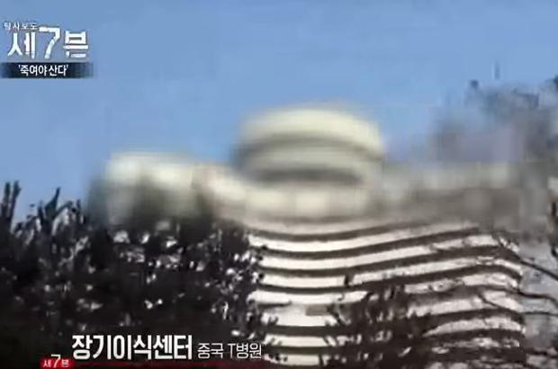 Documentário sul-coreano confirma extração forçada de órgãos ocorrendo na China