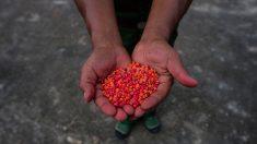 China: uso de drogas é alarmante entre funcionários do regime