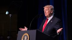 Trump considera punir China por roubo de propriedade intelectual