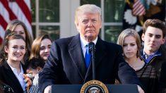 Trump revela sua maior lição aprendida no primeiro ano de presidência